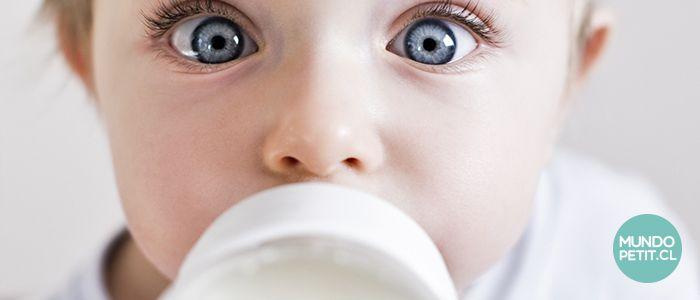 Alerta Alimentaria por leche en polvo infectada