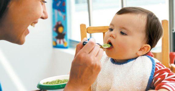 alimentos bebés