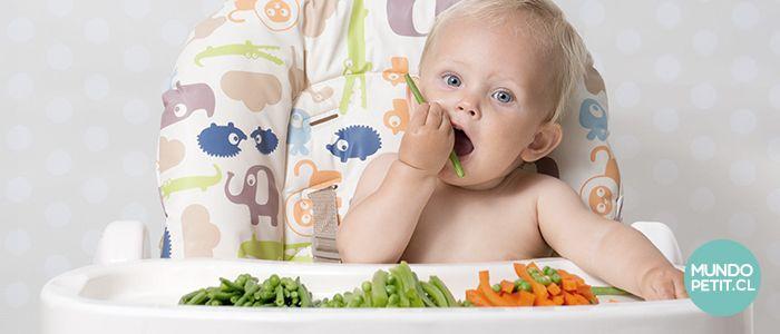 Método alimentación baby lead weanning