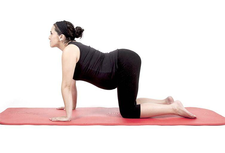 yoga embarazada vaca